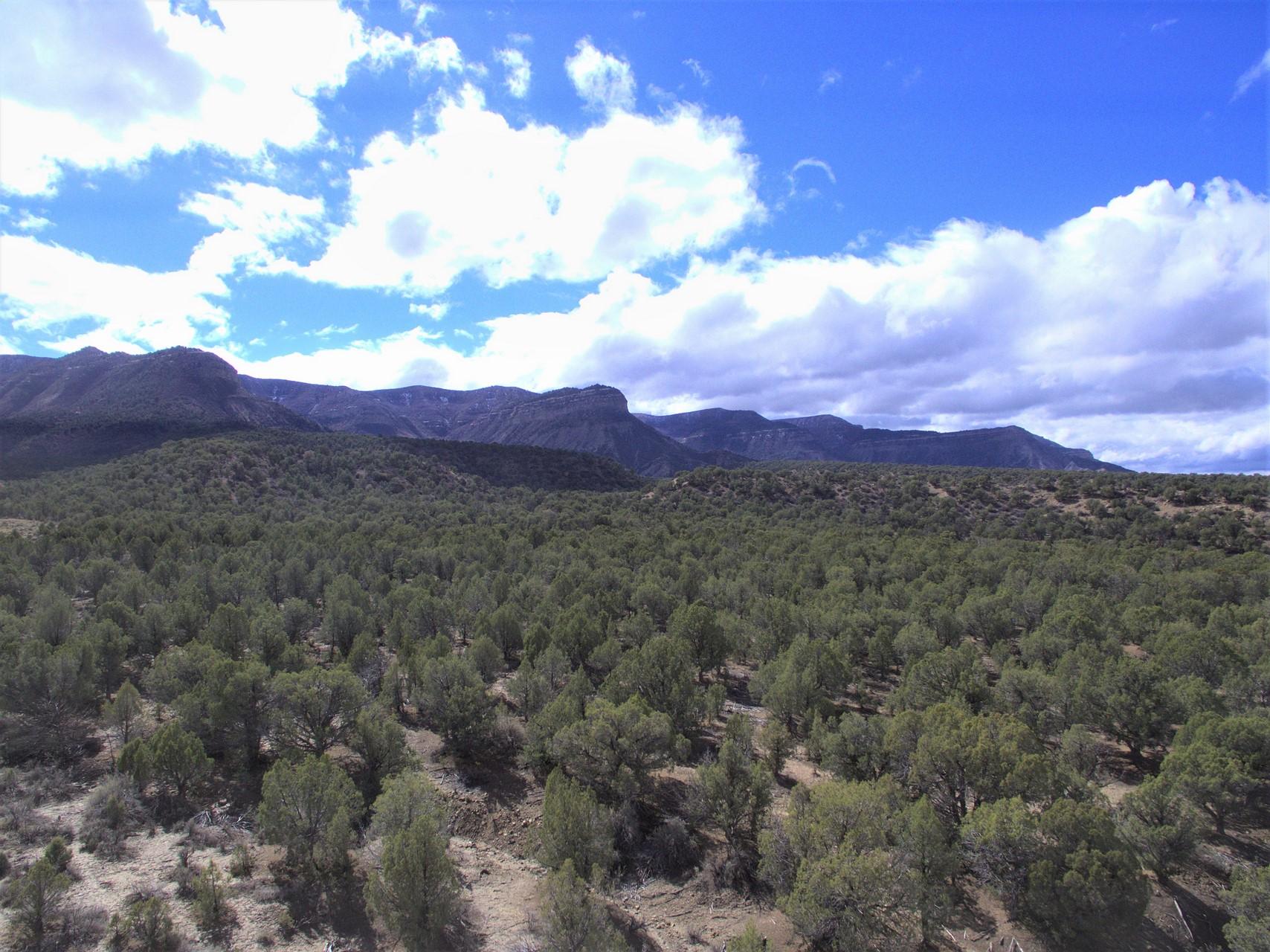 Mesa Verde Ranch Mountain Views