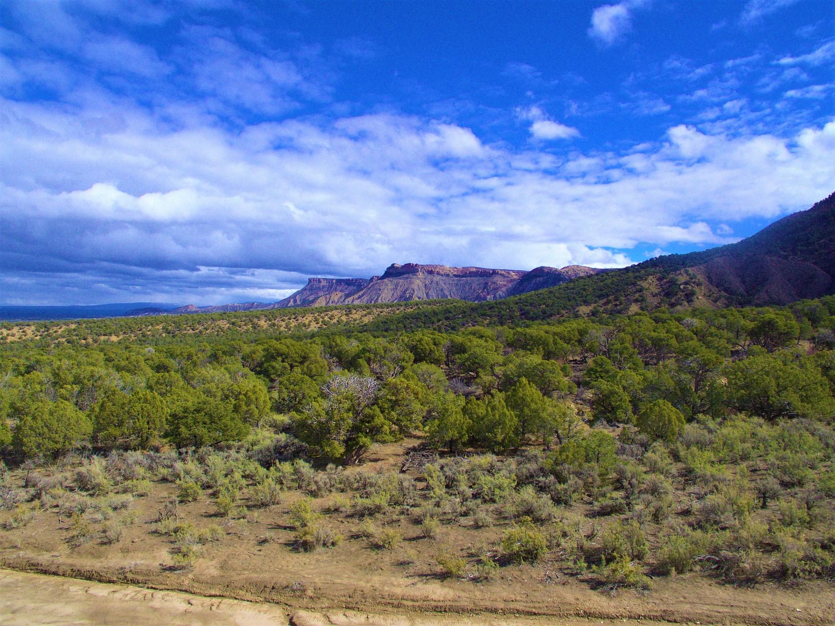 Mesa Verde Ranch - Ranches for Sale in Cortez, Colorado