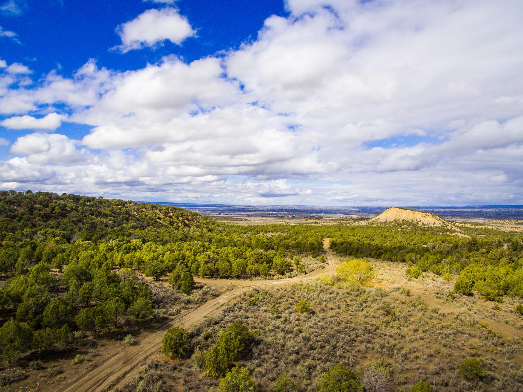 Mesa Verde Ranch Aerial
