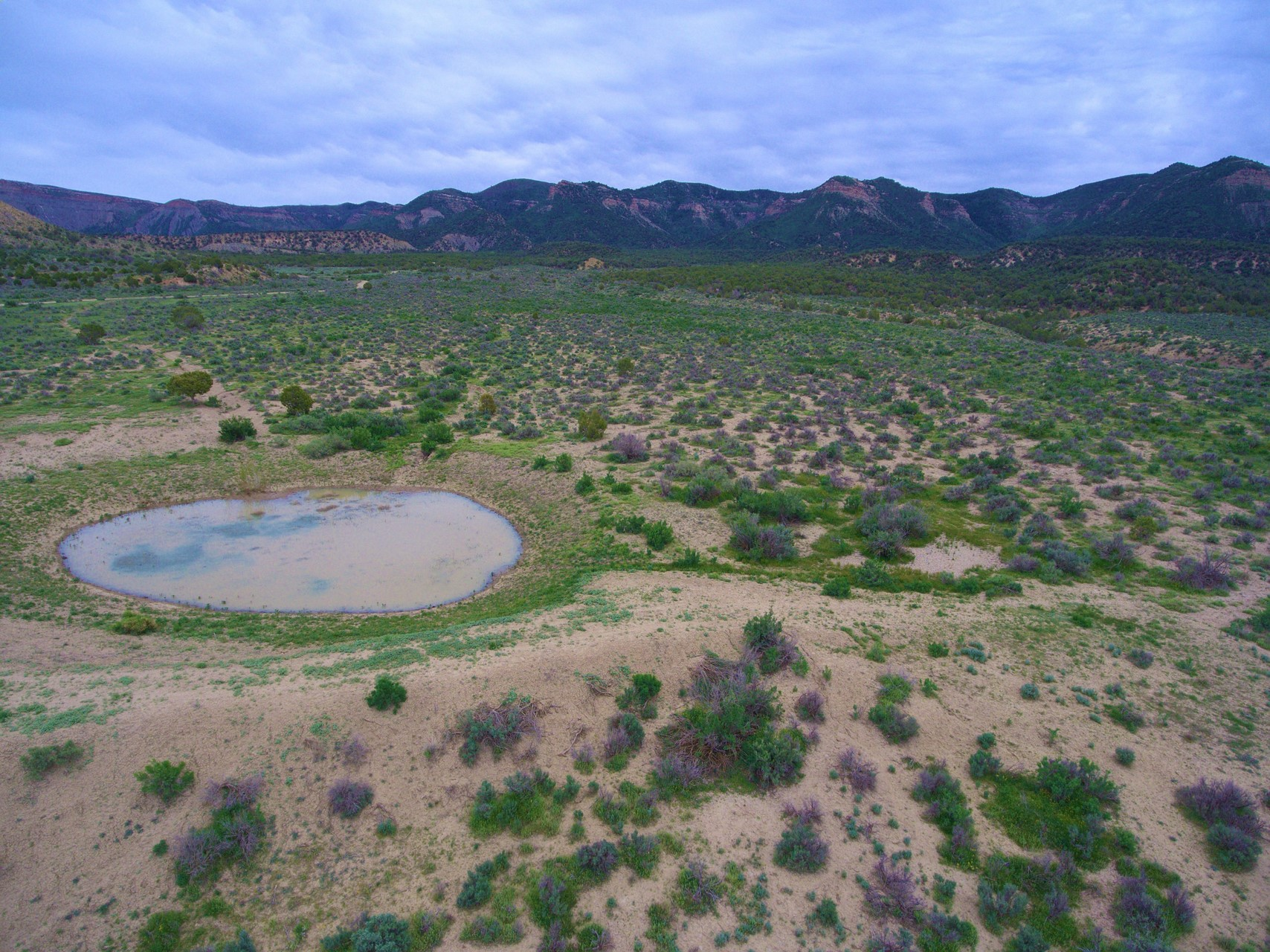Mesa Verde Ranch - Southwest Colorado Ranch