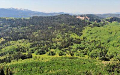 Elk Basin Ranch
