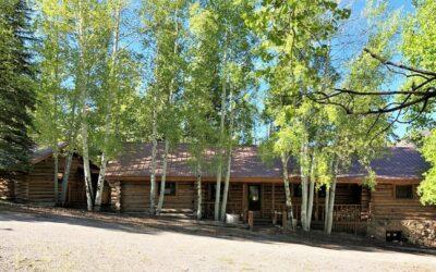 Lake Fork Estates Log Home