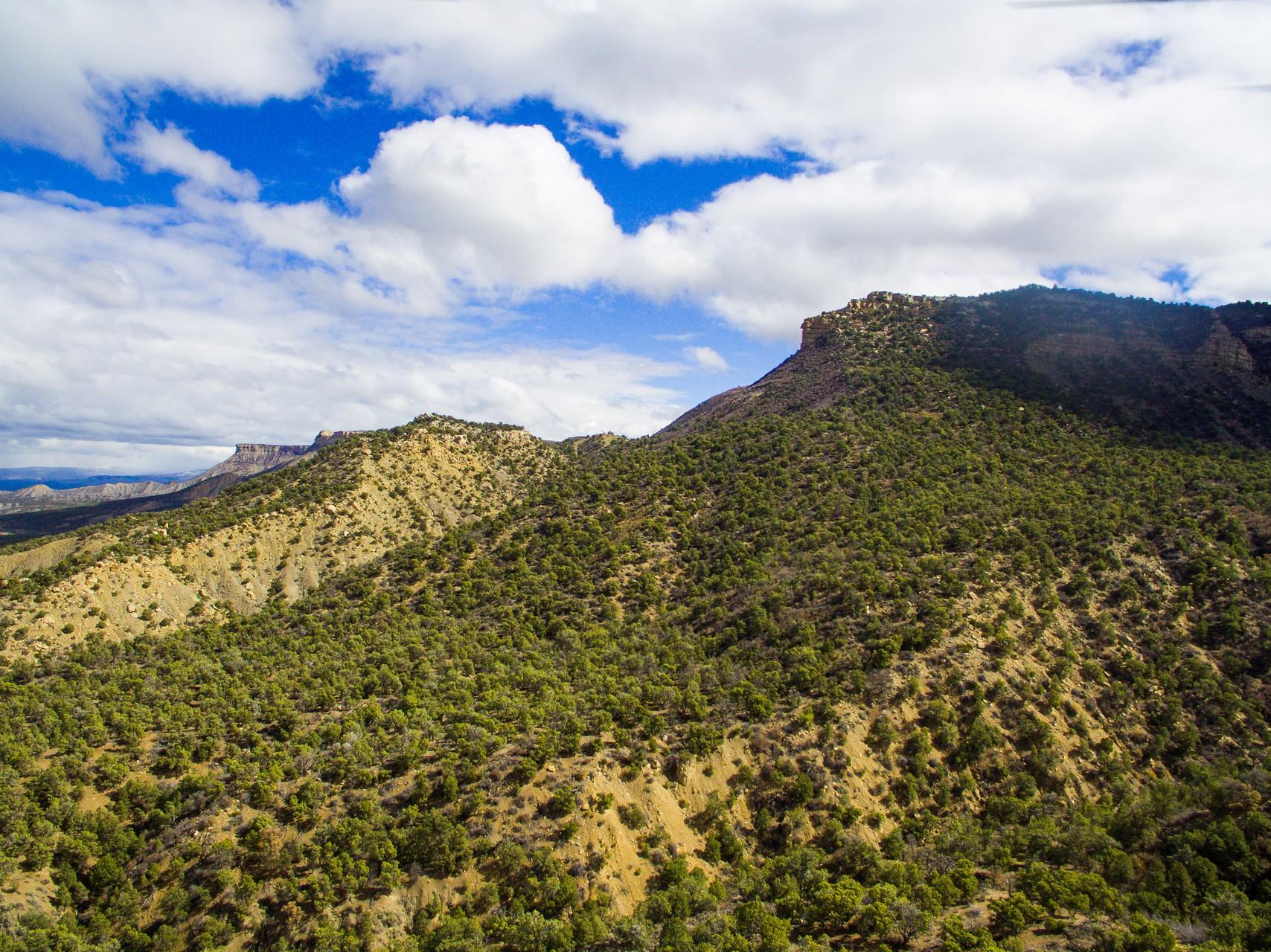 Mesa Verde Ranch - Cortez, Colorado