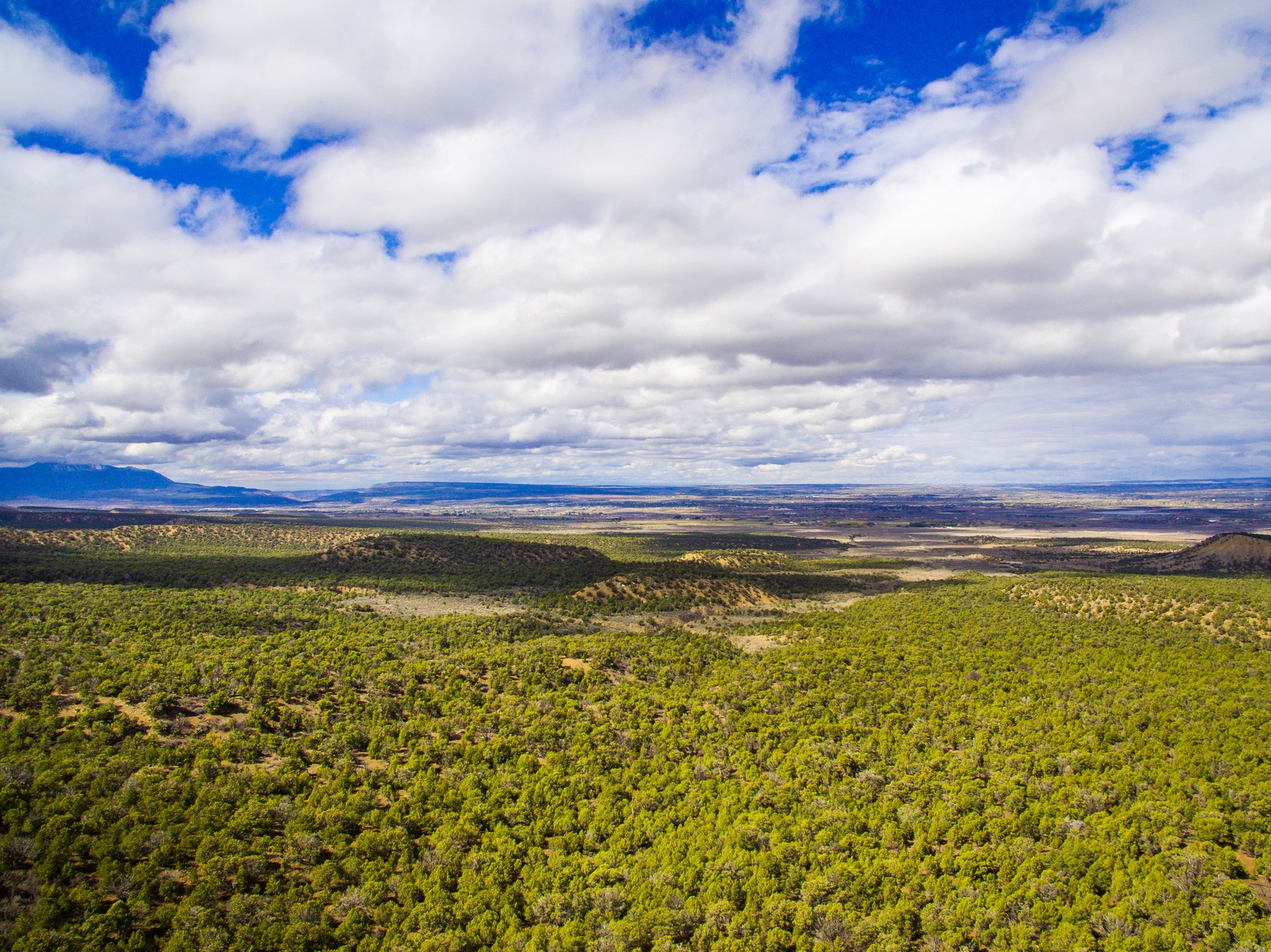 Mesa Verde Ranch - Ranches For Sale in Cortez, CO