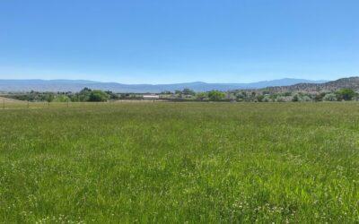 Ranger Road Ranch