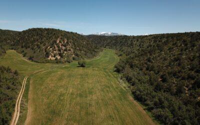 Split Fork Ranch