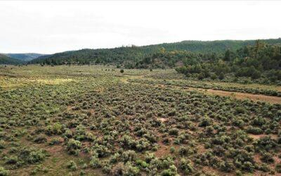 Jicarilla Ranch